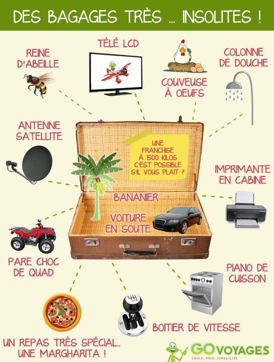 Bagages Insolites GOVOYAGE